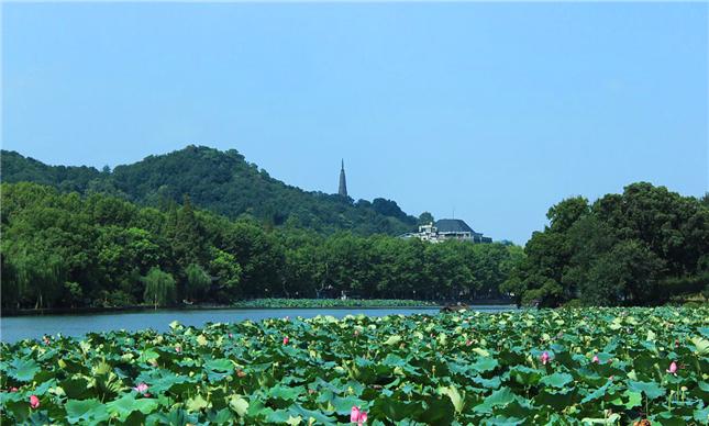 西湖3_副本.jpg