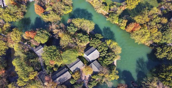 hangzhou wetland.jpg
