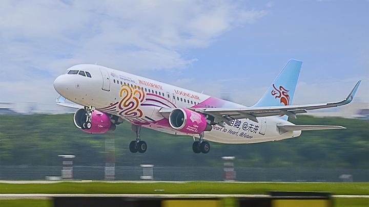 彩绘飞机1.jpeg