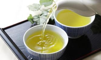 Xi sends warm wishes as world celebrates tea