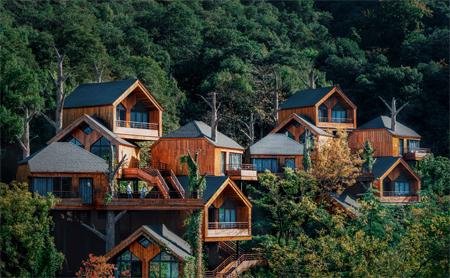 American architect spotlights whimsical tree house resort