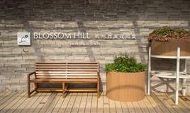 Hangzhou Xixi Blossom Hill Resort